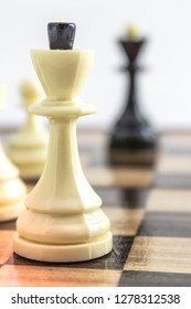 two chess kings is on the chessboard