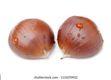 Two Chestnuts Close-Up With Water Drops Isolated on White Background