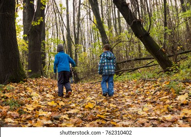 Two children boys walking through an autumn or fall forest, back view