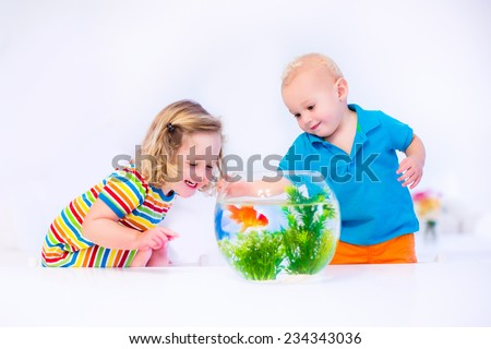 Two children, brother and sister, cute little girl and adorable baby boy feeding a goldfish swimming in a round fish bowl aquarium having fun with their pet at home