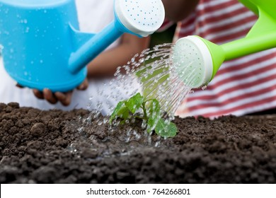 Two children little girl watering young tree with watering pot together