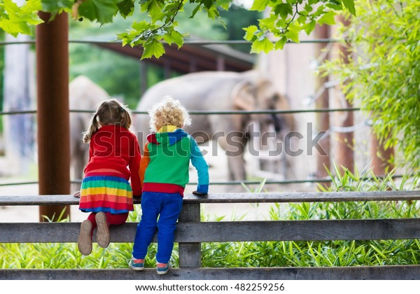 Two children, little toddler boy and preschool girl, brother and sister, watching elephant animals at the zoo on sunny summer day. Wildlife experience for kids at animal safari park.