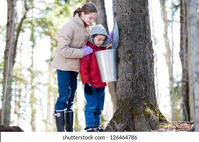 two children looking in a sap bucket at a sugar bush