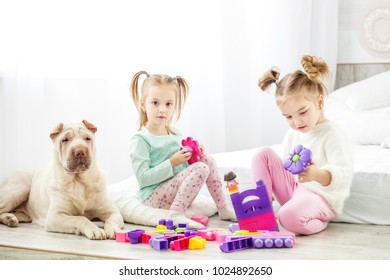 Two children play toys in the room. The dog is sitting. The concept of lifestyle, childhood, upbringing, family.