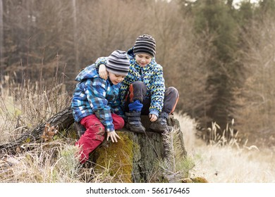 Two children sitting on a tree stump, playing in nature.