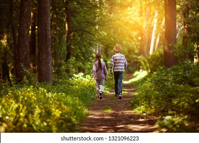 Two children are walking along the path in the sunny forest