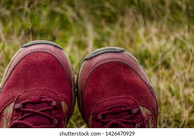 Two claret sporty shoes on blurred grass background