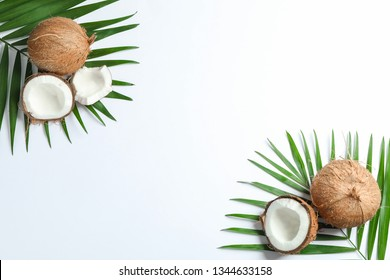 Two coconut with palm branch on white background