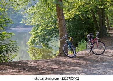 Two colorful bicycles are parked by some forest trees surrounding a lovely, hazy lake on a sunny summer's day