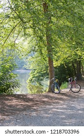 Two colorful bicycles are parked in dappled sunlight next to some forest trees surrounding a lovely, hazy lake on a sunny summer's day