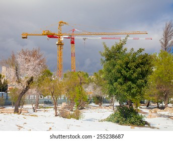 Two construction cranes working in the early spring