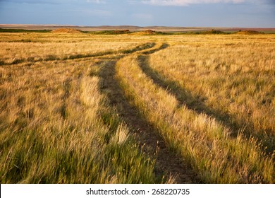 Two converging rural roads in the steppes of Kazakhstan