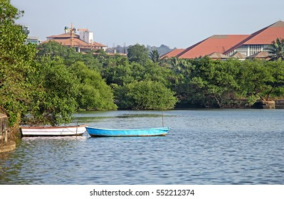 Two country fishing boats anchored in mangrove lake in Panjim, Goa