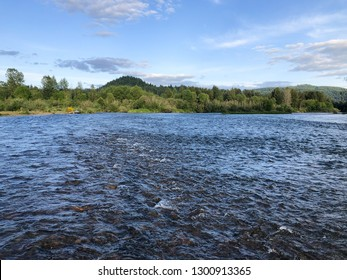Two currents come together to form a seam or riffle on the McKenzie River in Oregon. This type of pocket water often holds native redside rainbow trout.