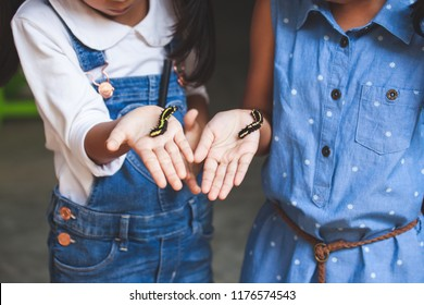 Two cute asian child girls holding and playing with black caterpillar with curious and fun together.