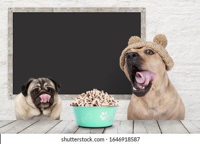 two cute dogs licking their mouth, rolling tongue, waiting for kibble treats, sitting at table, with blank blackboard in background