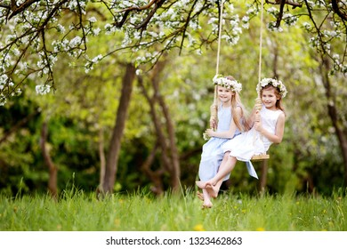 Two cute girls having fun on a swing in blossoming old apple tree garden. Sunny day. Spring outdoor activities for kids