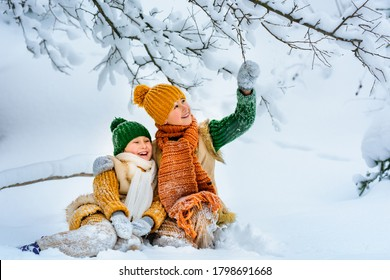 Two cute little cheerful children are playing with snow among snowdrifts. Children sit in the snow under snow-covered tree. Winter activities for children. Knitted scarf, hat, sweater, woolen coat.