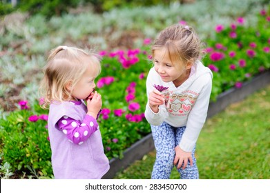 Two cute little girls, sisters or siblings playing with violet flowers in the garden on a summer day
