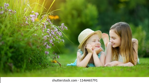 Two cute little sisters having fun together on the grass on a sunny summer day. Family time.