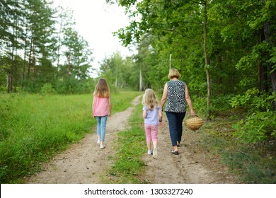 Two cute little sisters hiking in a forest with their grandmother on beautiful summer day. Children exploring nature. Family time in summer.