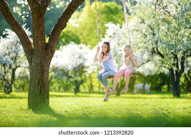 Two cute sisters having fun on a swing in blossoming old apple tree garden outdoors on sunny spring day. Spring outdoor activities for kids.