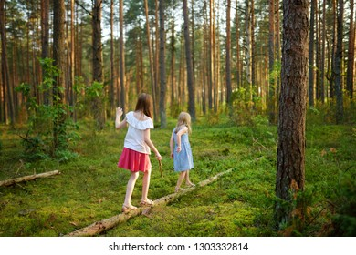 Two cute young sisters having fun during forest hike on beautiful summer day. Children exploring nature. Active family leisure with kids. Family fun.