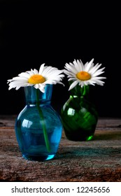 Two daisies in vases on an old piece of wood for a rustic look.