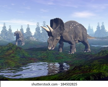 Two diceratops dinosaurs walking to water in the mountain by morning light