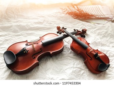 Two different size of violins put on background