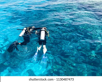 Two divers in black scuba diving suits, a man and a woman with oxygen bottles sink under the transparent blue water in the sea, the ocean in a tropical paradise warm resort.