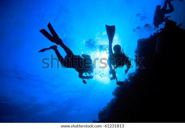 Two divers explore underwater world