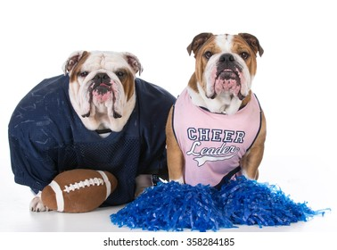 two dogs dressed up like football player and cheerleader on white background