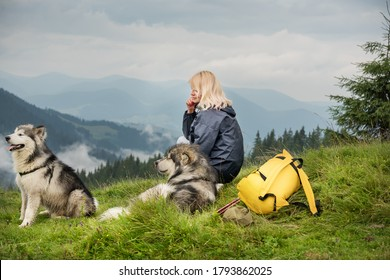 Two dogs of the Malamute breed lies on the grass in a meadow in the mountains next to a tourist girl and a backpack. In the background there is a forest and mountains. The atmosphere of tourism and tr