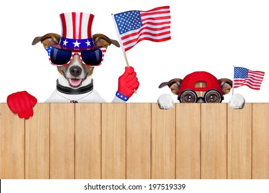 two dogs watching 4th of july parade