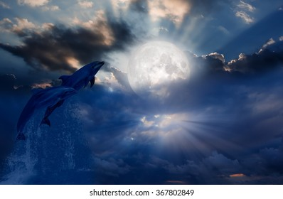 """Two dolphins floating at ocean in moonlight  """"Elements of this image furnished by NASA"""""""