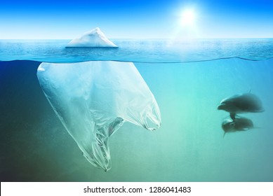 Two dolphins swimming near huge plastic bag in the open sea