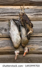two downed ducks and a woodcock hanging on a log wall