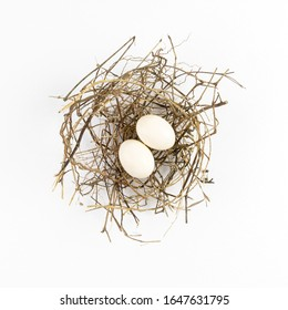 Two eggs of dove birds in brown dry grass nest, Top view, isolated on white background.