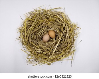 Two eggs are placed in the nest. White background