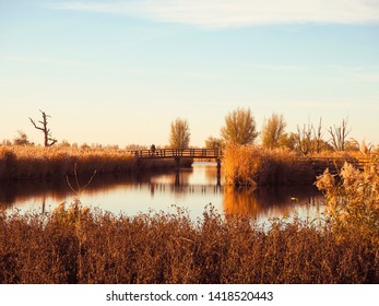 Two elderly people crossing a wooden bridge during an evening stroll through the Dutch polder landscape. A winter sunset at Oostvaardersplassen, The Netherlands.