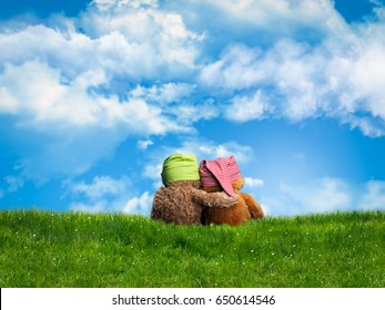 Two embracing Teddy bear sitting back. Green grass, blue sky, open space. The concept of friendship, empathy, love