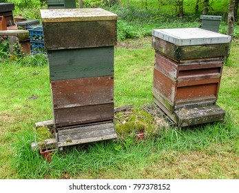 Two English National beehives in an apiary