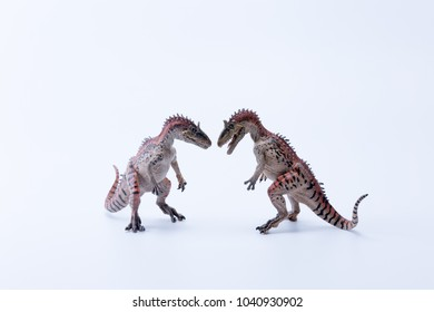 Two face to face Cryolophosaurus dinosaur in attack position with white background