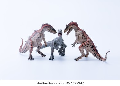 Two face to face Cryolophosaurus dinosaur in attack position for a Velociraptor with white background