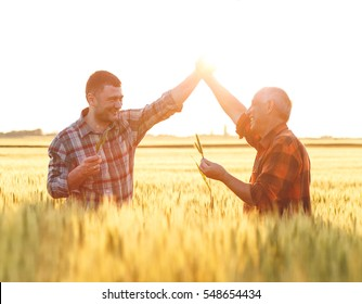 Two farmer standing in a wheat field. They are happy with yield of wheat.