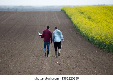 Two farmers with laptop walking beside rapeseed field