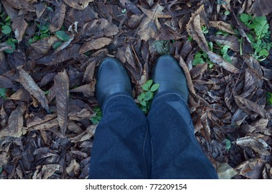 Two feet in jeans and shoes on dry yellow and green leaves