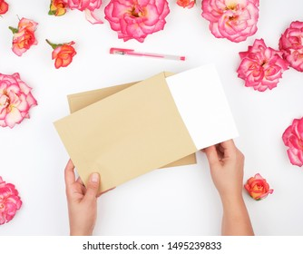 two female hands hold a brown paper envelope, moisten a white sheet of paper into it, sending letters
