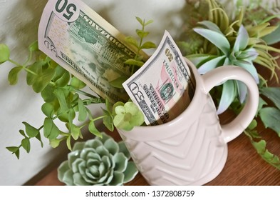 Two Fifty Dollar Bills in a Pink Mug Surrounded by Succulents